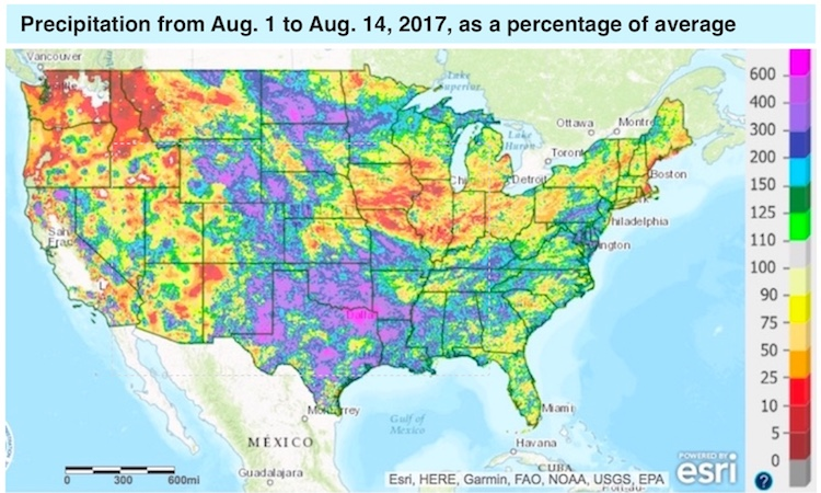 U.S. precipitation from 8/1/17 to 8/14/17 as a percent of average