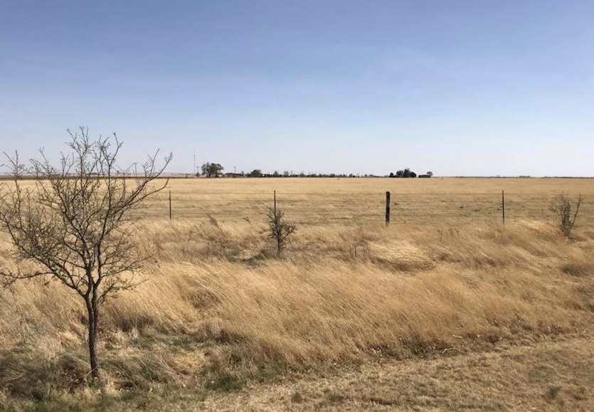 Dry grasslands of northwest TX, 4/11/2018