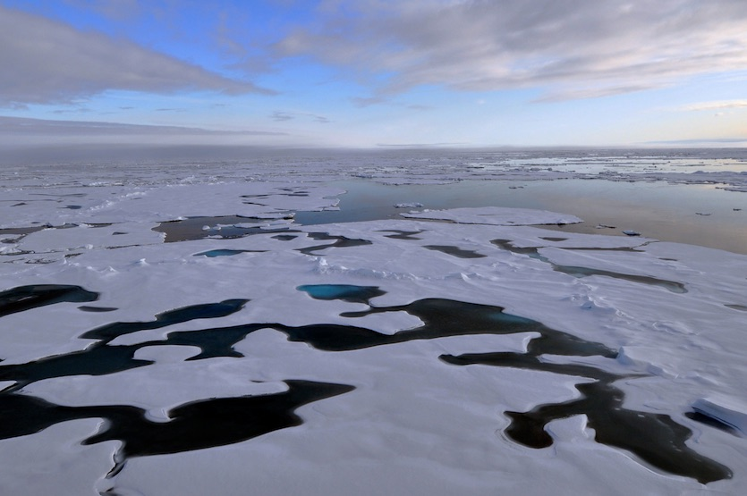 Arctic sea ice during NASA ICESCAPE mission, 2011