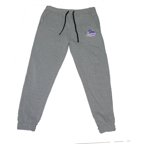 Phantoms Joggers - Grey