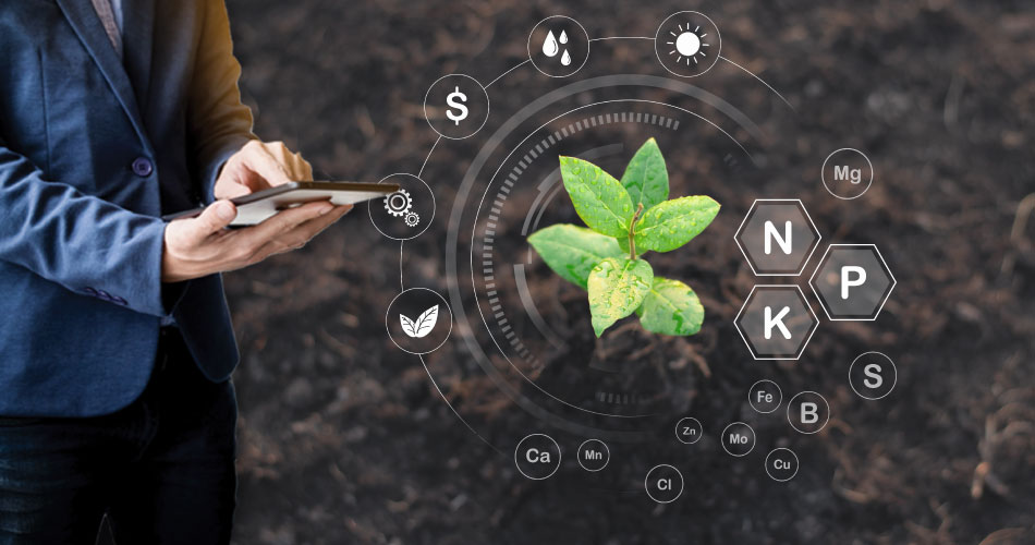 Role-of-IoT-in-Bettering-Crop-Health-Management-img