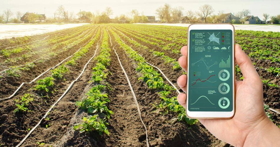 crop-Precision-Agriculture