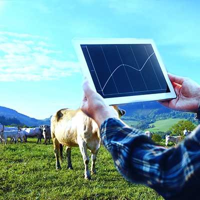 crop-and-livestock-management