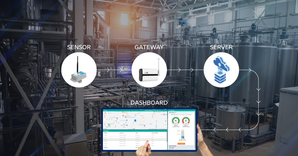 how-biz4Intellia-uses-iot-technology-in-dairy-Industries