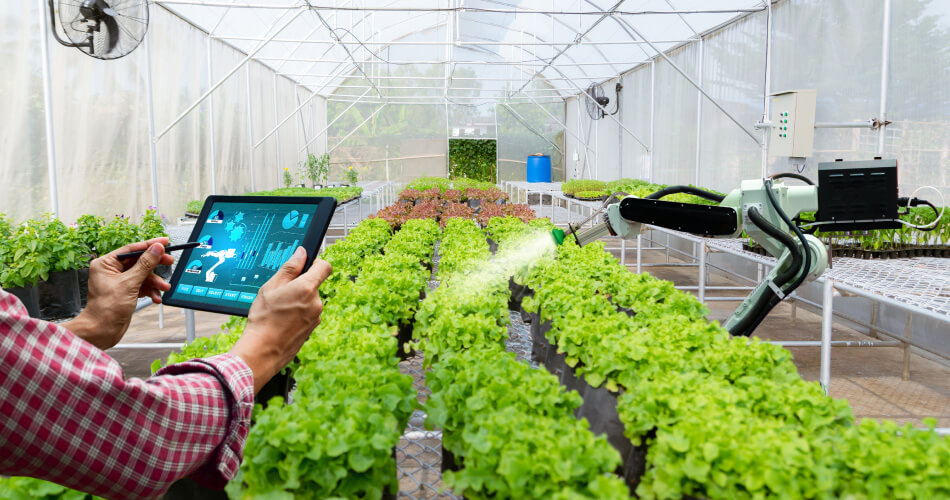 iot-farming-Smart-Greenhouses