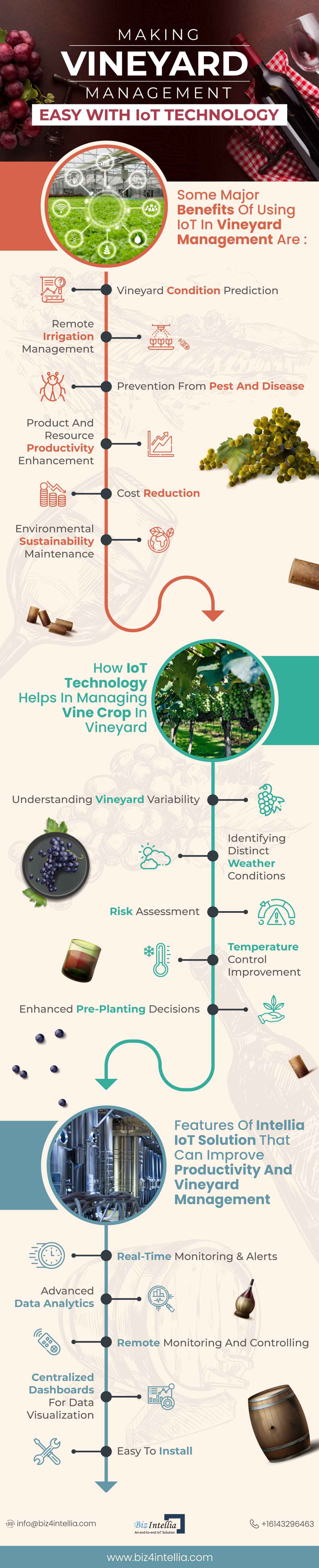 making-vineyard-management-easy-with-iot-technology