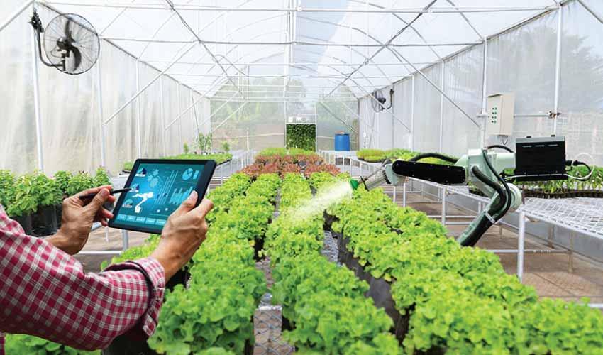 smart-farm