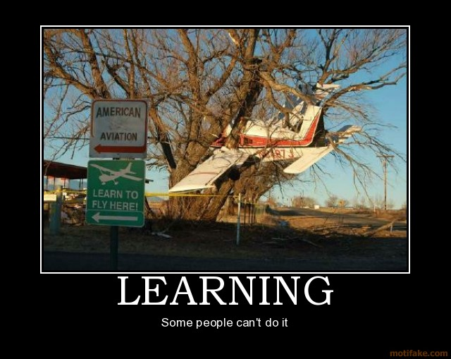 learning_to_fly