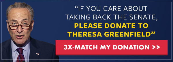 CHUCK SCHUMER: If you care about taking back the Senate, please donate to Theresa Greenfield's Campaign
