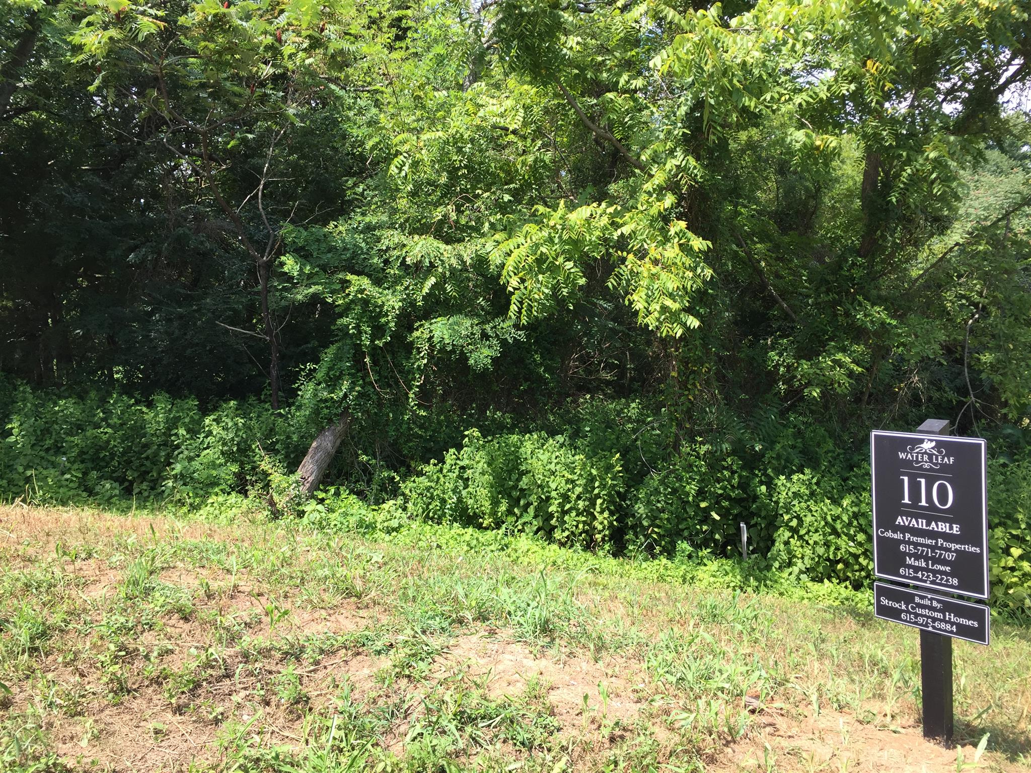 Beautiful treed lot at the end of the road  with large building envelope.  Backs to a tree line and creek,  Water Leaf off Gosey HIll Road will have 24 total homes. 4 bedroom perc site,  Builder is Strock Custom Homes.  Build your dream home.