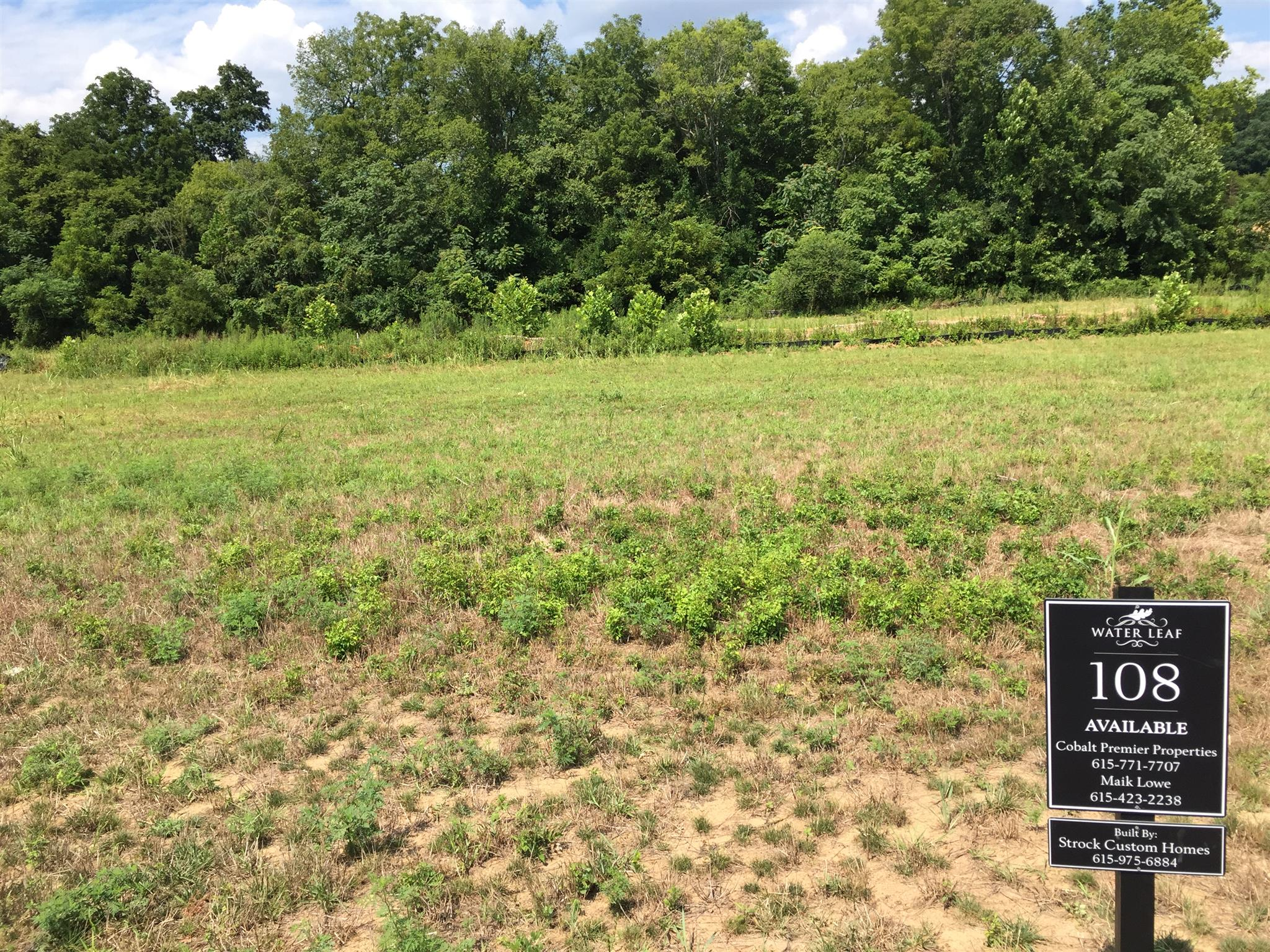 Beautiful corner lot with large building envelope (pool).  Backs to a tree line and creek,  Water Leaf off Gosey HIll Road will have 24 total homes. 4 bedroom perc site,  Builder is Strock Custom Homes.  Build your dream home.