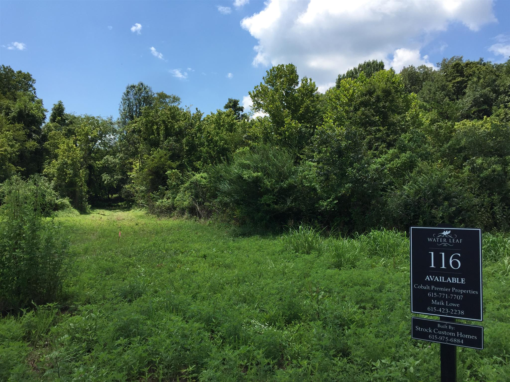 Beautiful partially treed  lot with deep and wide building envelope (pool?).  Water Leaf off Gosey HIll Road will have 24 homes. 5 br perc site,  Builder is Strock Custom Homes.  Build your dream home.