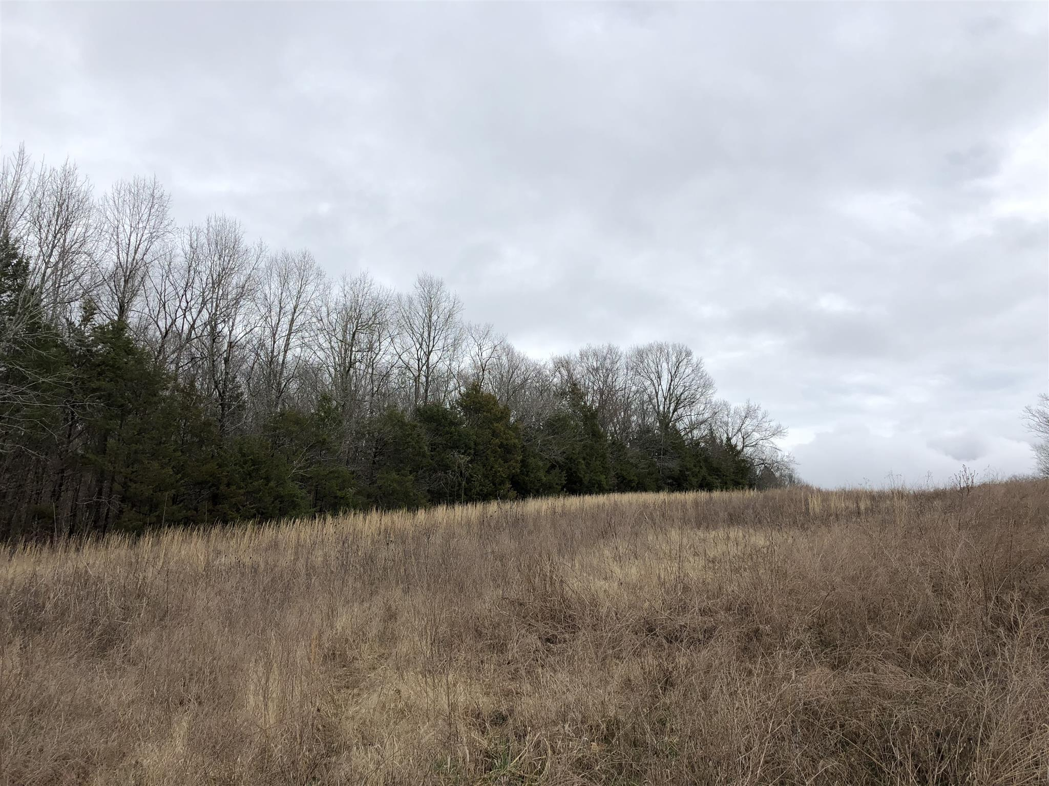 Tract 1 and 2 at 4920 Smithson Road in Williamson County.  Wonderful wooded property with other houses nearby on Smithson Road.  Utility easement runs through both but no power lines.  Soil Scientist says need an alternative system, no perk site.  Please do not block easement to property in rear.