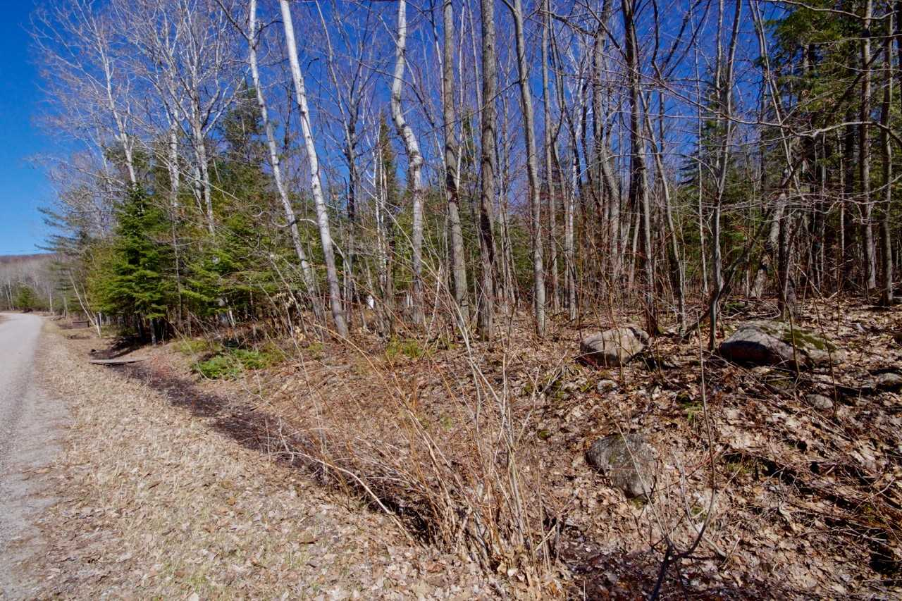 Build Your Dream Home Here!Extra Deep Treed Building Lot (365') W/ Just Over 122' Frontage On Silver Birch Dr.,Across From Water Access To Georgian Bay- All In The Highly Desirable Thunder Beach Area.This Treed Lot Offers A Quiet Setting W/ Lots Of Privacy & Is About 15 Minutes From Town & All Amenities,Is Under 2 Hours To The Gta.Hydro & Gas Are At The Road.Please Note,Buyer Is Responsible For Lot Levies & Development Charges.For More Photos...Con't In Extra