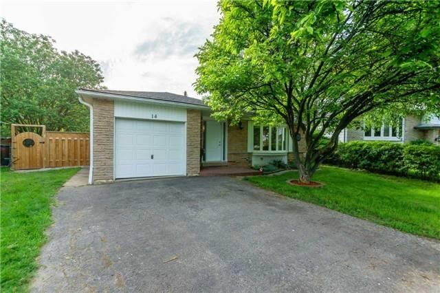 Spacious And Well Maintained Bungalow In A Desired Neighborhood,Ready To Move In! 3+2 Bedr, 2 Bathr, 2 Kitchens, Laundry On Main Floor And Basement. Refinished Hardwood Floors  On Main Floor, Roof(2017), Furnace(2016), Ac(2016), Newer Windows/Doors.Freshly Painted,Private Driveway/Attached Garage,Finished Basement,Separate Entrance.Excellent Location With Easy Access To 410,427,Transit,Schools,Parks,Airport,Shopping.