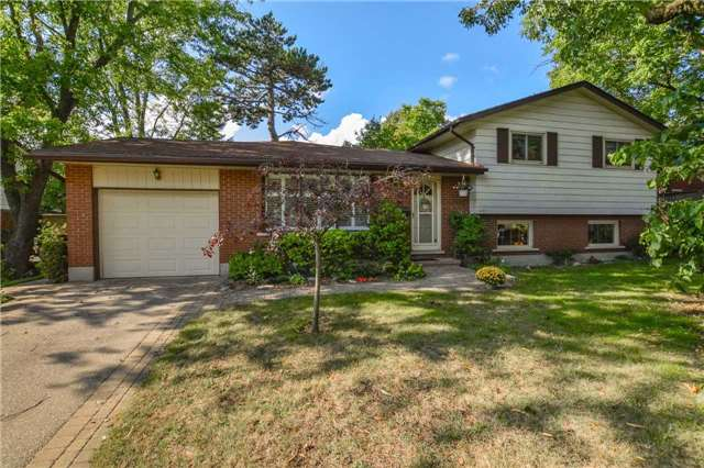 Immaculately Maintained Side Split With A Large Addition Walking Distance To Downtown Guelph! Upon Entering You'll Notice The Pride Of Ownership Shines Throughout This Fantastic Home. Spacious Living/Dining Room With Two Huge Windows Allowing An Abundance Of Natural Light To Flow Through Out The Home.