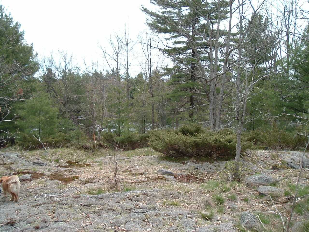 Lots Of Privacy Here On 59 Acre Parcel With A Right Of Way From Muskoka Rd 5 (Honey Harbour Rd) To The Acreage. Barrie, Orillia, Parry Sound 45 Minutes, Midland 30 Minutes, Mount St Louis Ski Hills 20 Minutes, Lots Of Marinas Very Close For Georgian Bay, Trent-Severn Waterway, Six Mile Lake. Development Fees Will Apply If /When A Building Permit Is Applied For.