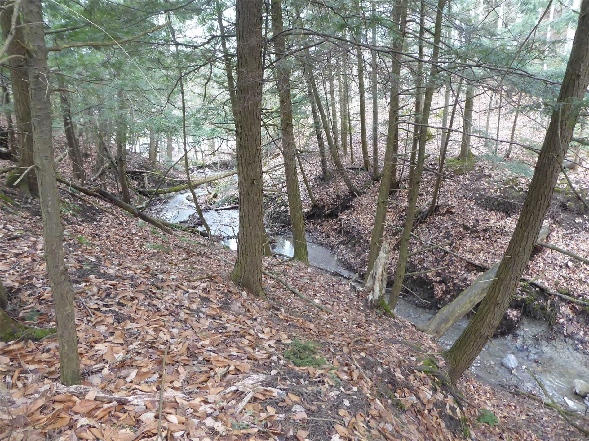 Absolutely Stunning Property With A Building Envelope On Top Of The Hillside For Views Of A Mature Mixed Forest And Georgian Bay. Magnificent Sunrises And Breathtaking Sunsets Over Georgian Bay. This 2.844 Acre Residential Lot Features A Beautiful River With A Ravine And Waterfall. Pictures Cannot Express The Abundance Of Nature, Steep Slope, And Development Opportunity Nestled In The Trees. Building Envelope Presented West Of The Riverbank On A Hilltop.