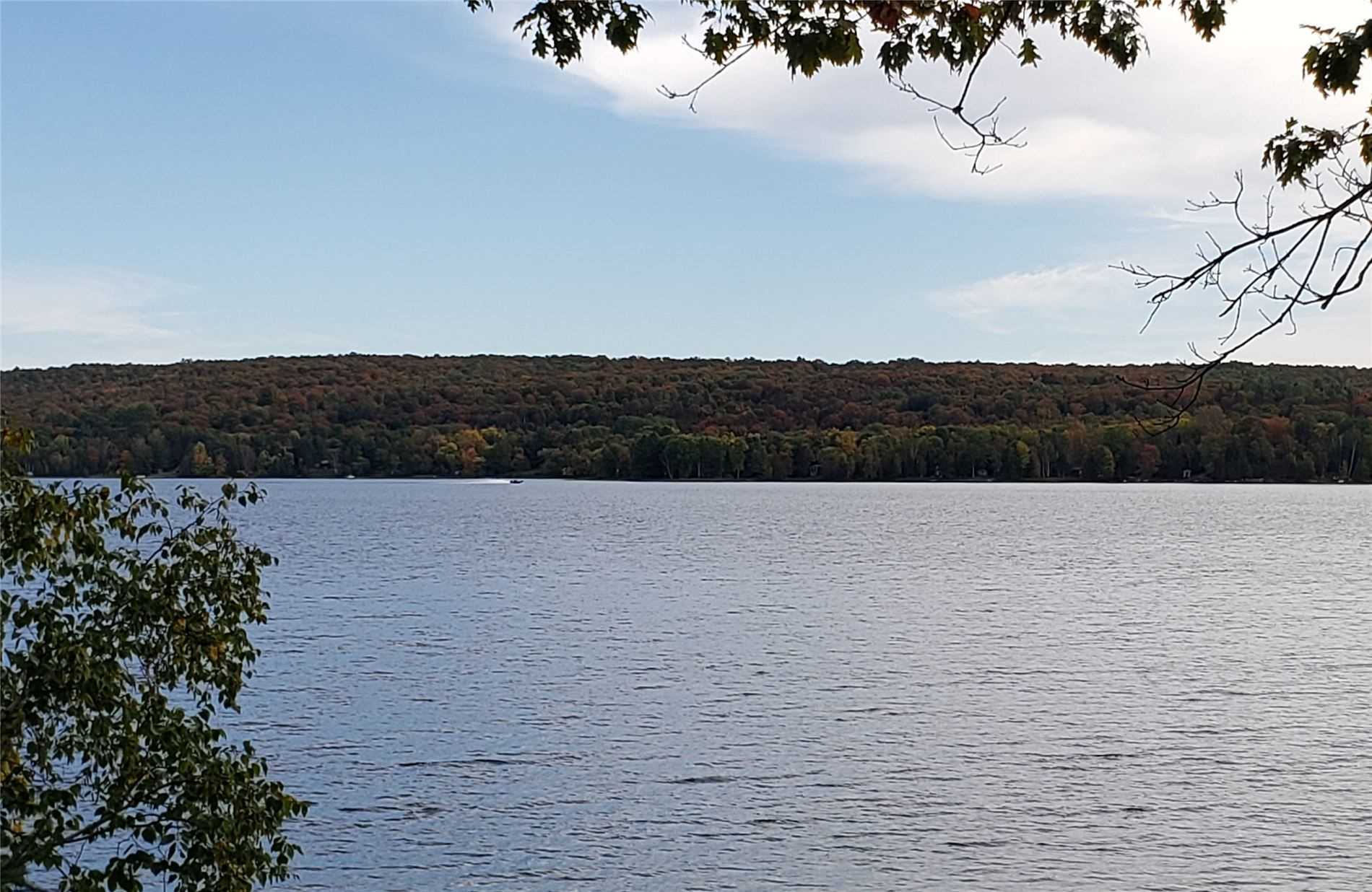 Beautiful 50' X 150' Lot Across The Road From Maple Lake Shoreline. Vacant Lot On Maple Lake In The Haliburton Area. House Recently Burned Down. Development Charges Exempt If Building A New Dwelling. Existing 2000 Gallon Holding Tank, Pumped 2020.