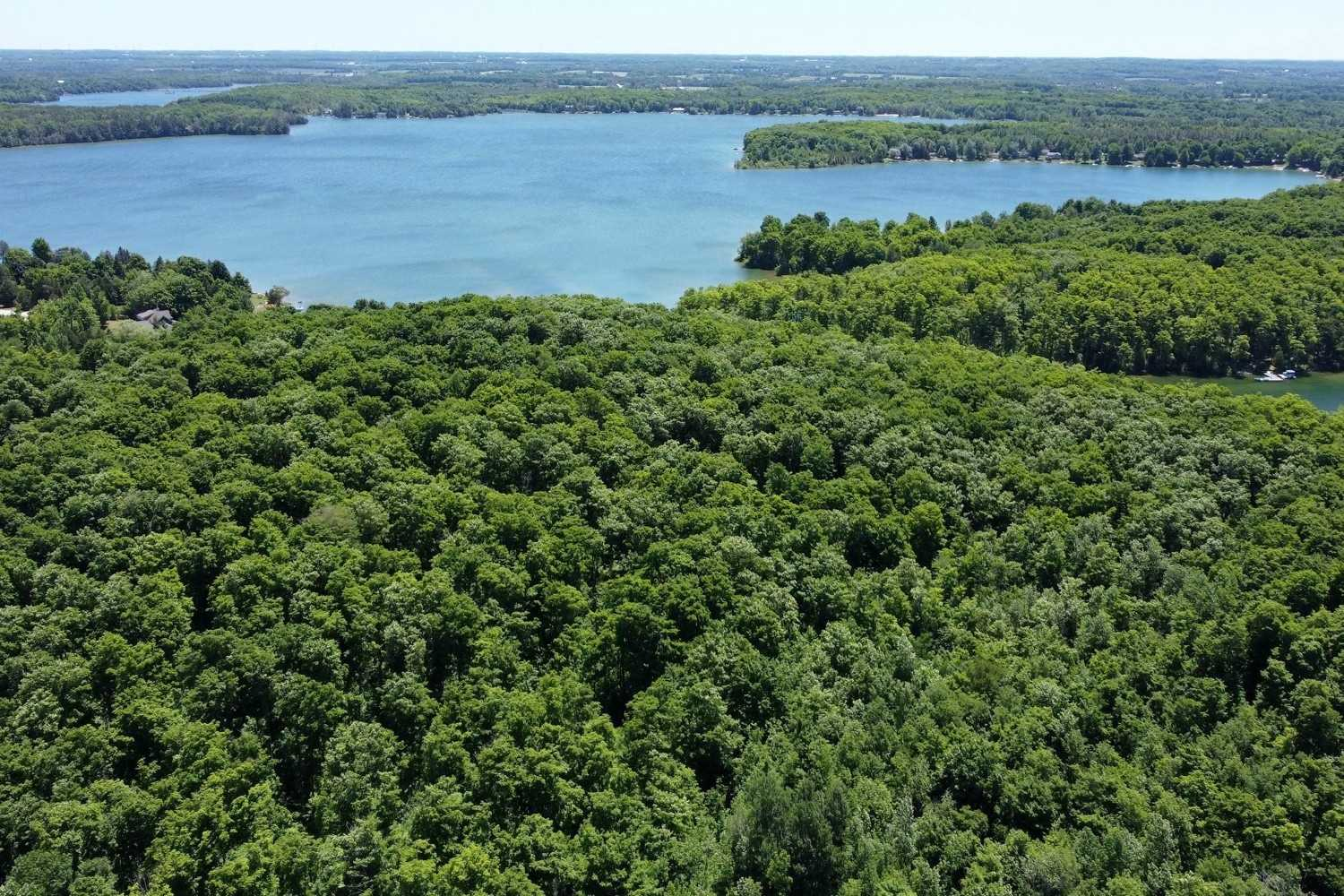 92 Acres Of Mixed Hardwood, Pine Forest And Fields And Get This, 1800 Feet Of Lake Frontage On Lake Eugenia, One Of The Most Popular Inland Lakes In Southern Ontario! Build Your House/Cottage/Chalet And Of Course A Dock At The Lake. There Is Even A Century Old Post And Beam Drive Shed. Only 1.5 Hours To K/W, Waterloo/Guelph Or Pearson.