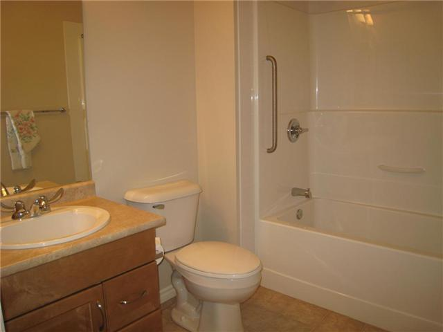 Large main bath with Tub shower combo for those that love their baths.