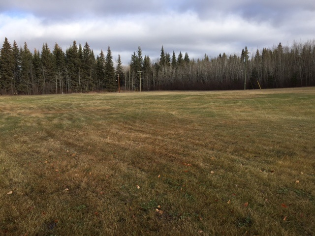 """Tremendous Potential"" Need space to build your dream home... look no further, this is the spot for you. This 2.08 acre parcel situated in a quiet part of the village of Glendon has room to expand & possibly build a revenue property."