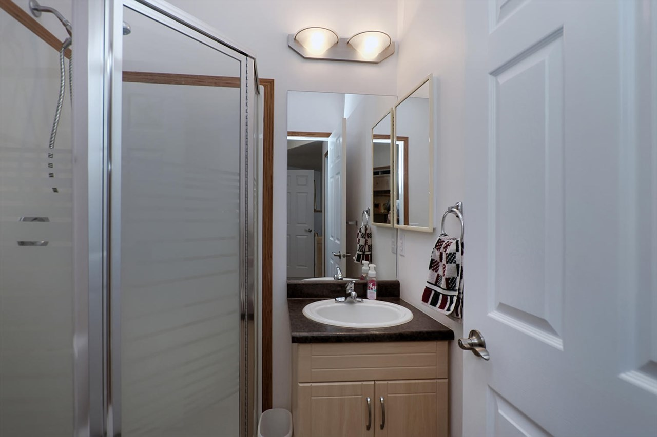 The lower level bathroom is also updated with new vanity, sink, counter tops, taps and has a shower.
