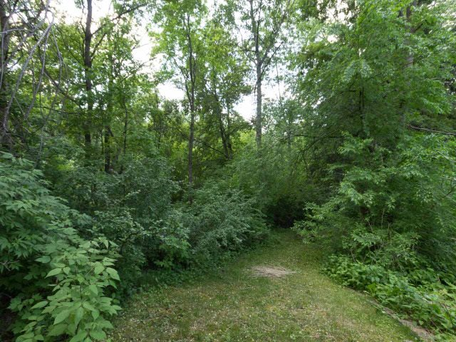 One of the last available lots backing onto Mackinnon Ravine boasting 50.5 ft Frontage, East side 126.6 ft, Back 60.1 ft, West side 93.18 ft. This is a rare opportunity to design, craft and build your dream home on a private building site surrounded by nature. The location is literally steps to the river valley trail system, minutes to schools, community amenities and shopping plus only a short drive Downtown or U of A. The property address is subject to change dependent on City of Edmonton's discretion. Please visit Realtor's website for additional information.