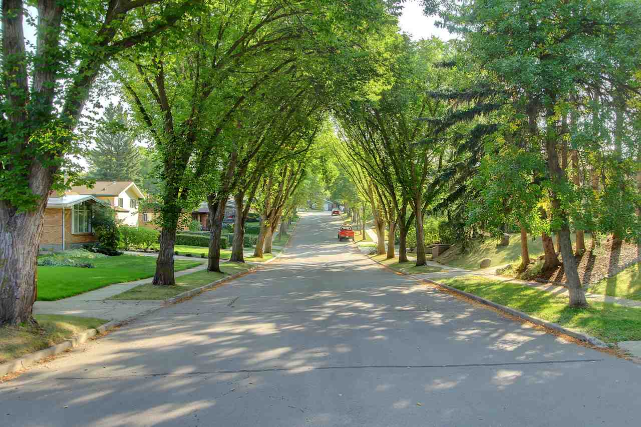 YES... This home is on one of those special streets in St. Albert that have the lovely boulevard trees that meet at the top. You get to enjoy the canopy each and every time you drive to or away from your new home.