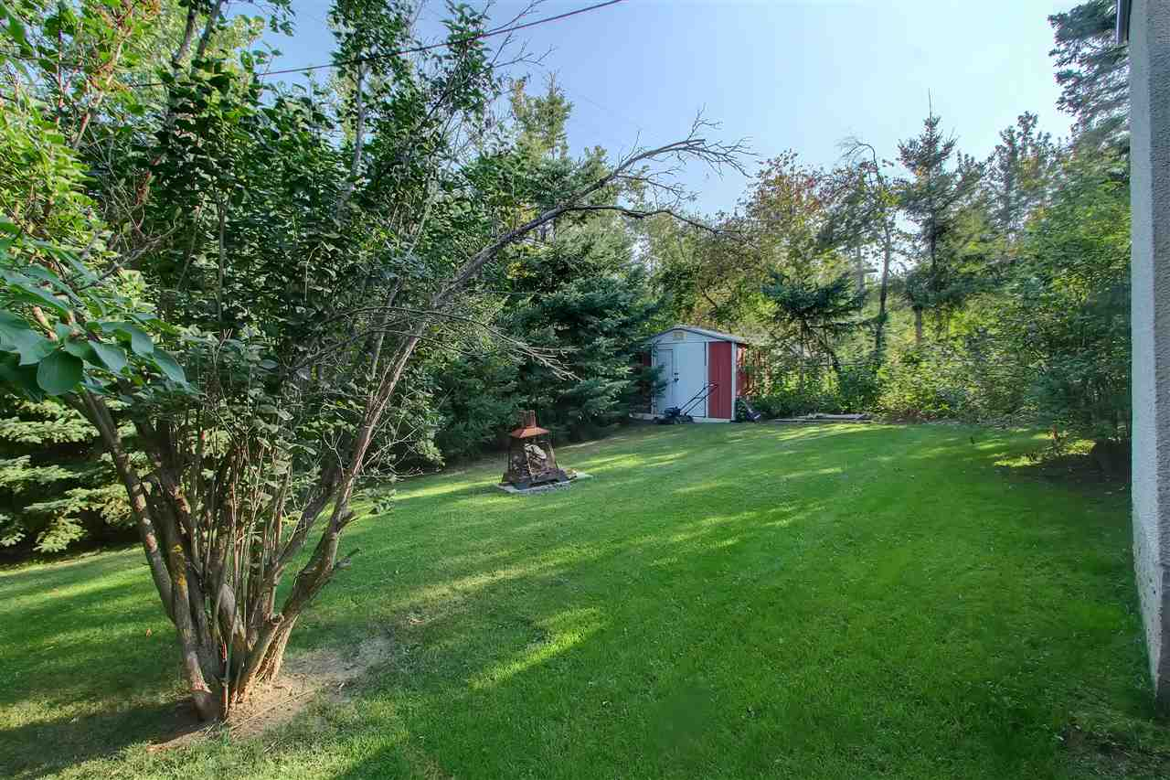 THE YARD is huge and at the back is a gate leading into the mature GRANDIN RAVINE... You will love this space for your kids or pets to run around and enjoy.