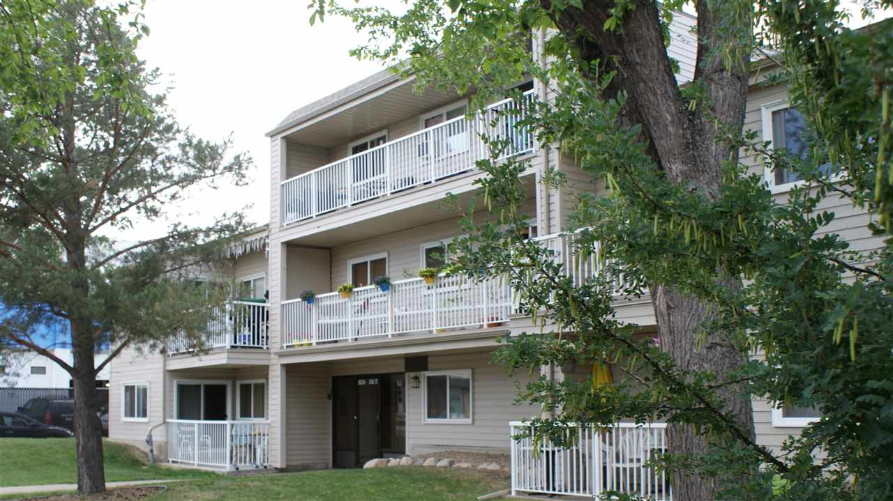 Fully renovated large 1 bedroom unit with newer bathroom, gleaming cherry laminate and ceramic tile. Newer stove and fridge. Very large balcony where you can enjoy your BBQ or get together. End unit, Very private location on the 2nd floor. Huge tree in the front of the balcony makes this condo very private. No carpet, good storage room in unit. Kitchen has a good sized window and double sink. Building in good shape with new balconies, siding, new carpet in common areas. Good location, close to all major roads, transportation and shopping.
