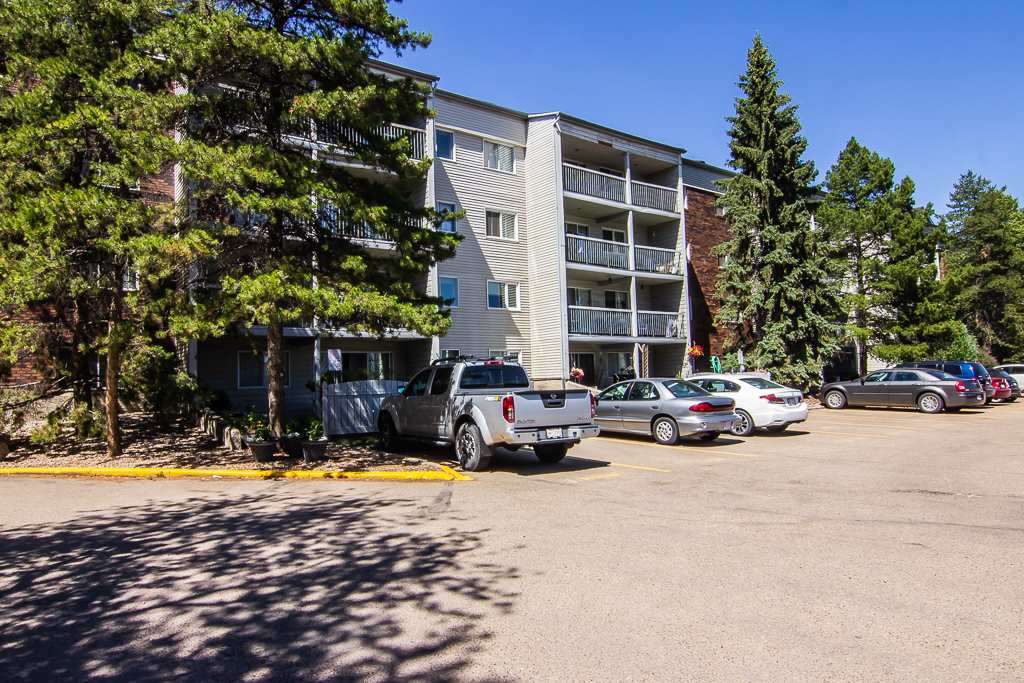 Great investment opportunity or first time home for a new buyer. Unit needs some TLC but offers plenty of potential Spacious suite with open-concept floor plan and spacious kitchen. Unit is located on the main floor of building and features a private patio and plenty of rooms for entertaining friends and family!