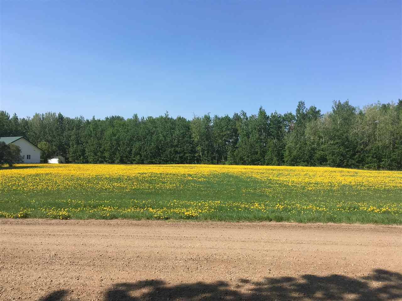 2 acre (+/-) Lot in the Village of Warburg. Located approx. 30 mins from Leduc, Drayton Valley, Stony Plain, Nisku and the Edmonton International Airport and 15 minutes from Pigeon Lake and Genesee Power Plant. Great Potential for this lot which is situated between a Church and Town owned land! Great Potential to Subdivide!