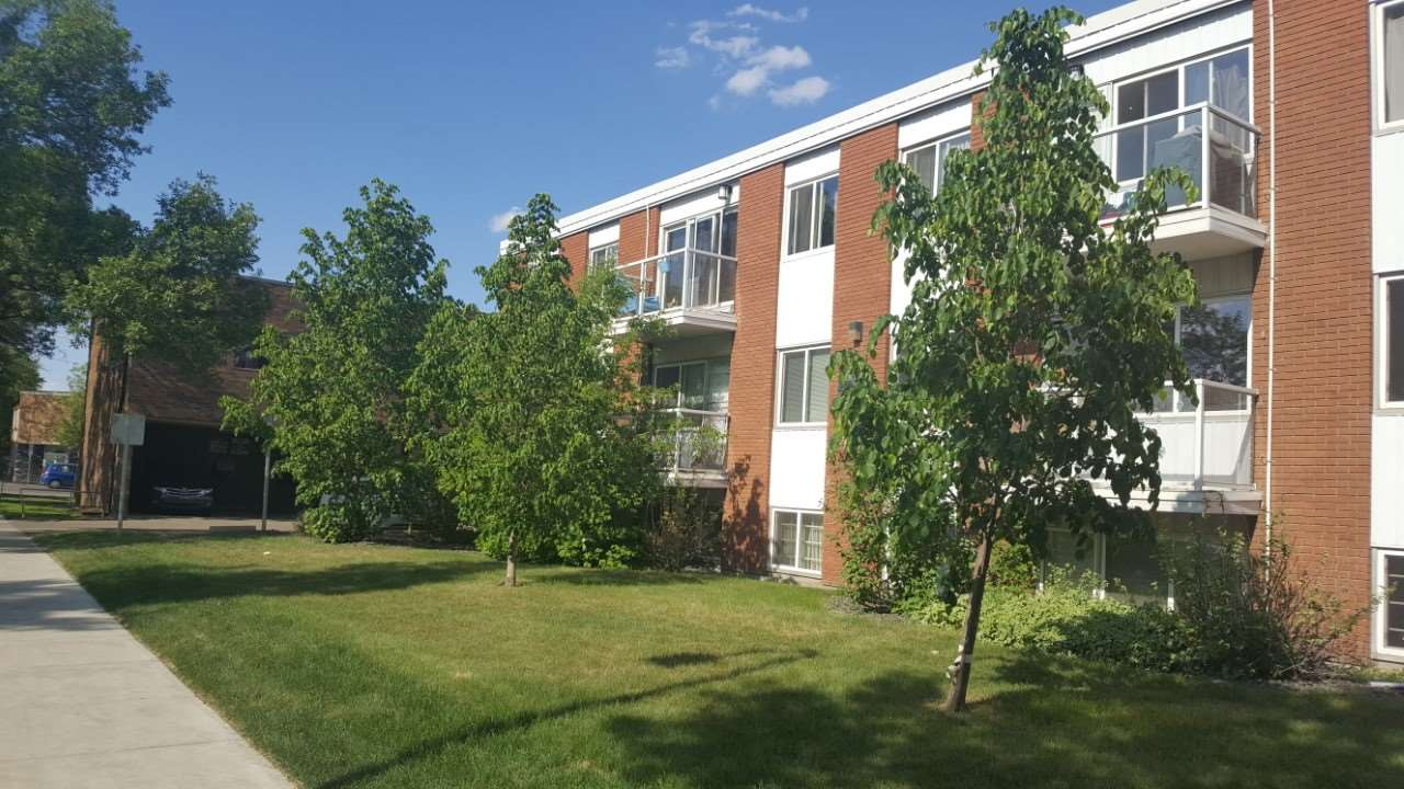 INVESTOR ALERT!!! THIS LOCATION and PRICE is why buying this INVESTMENT is a no-brainer! Imagine a mortgage payment less than $450/month! Located in mature Queen Mary Park, Shelaine Manor holds this 1 bdrm with galley kitchen, good-sized living room, newer laminate flooring and 4pc bath. That's not all, you get an assigned parking stall, pets allowed with board approval AND your condo fee includes HEAT and WATER. Conveniently close to everything important to Edmonton's downtown such as MacEwan University, Rogers Place, trendy restaurants, great shopping including City Centre shopping mall and more! Do you need any more reasons? Act now!