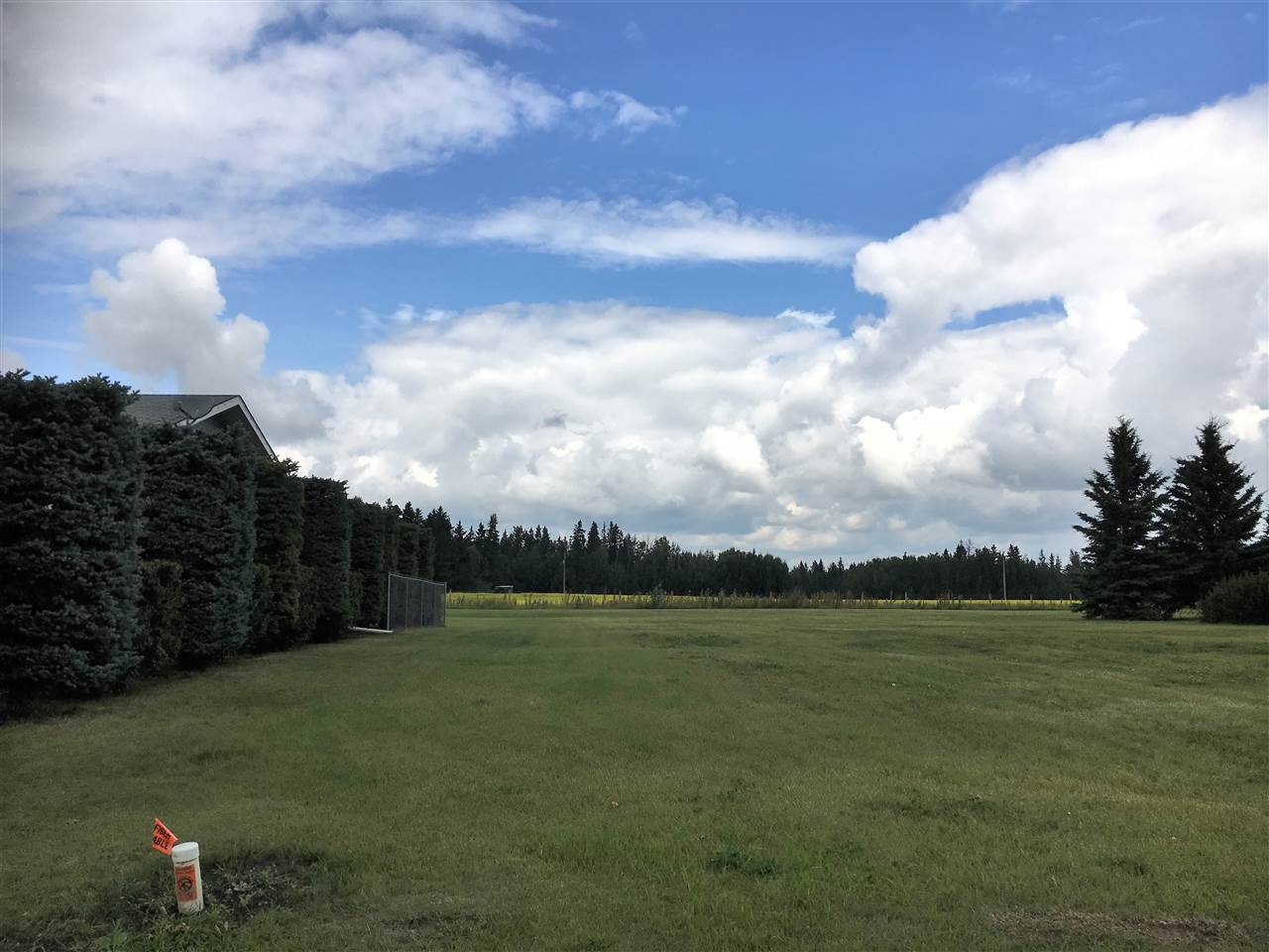60'x110' lot in newer neighborhood backing green space. Services available at lot line. Thorsby is a great community with many amenities and is an easy commute to Leduc and the airport in 25 minutes. With Costco, the outlet mall and all the shopping in Leduc you'll never need to go further!