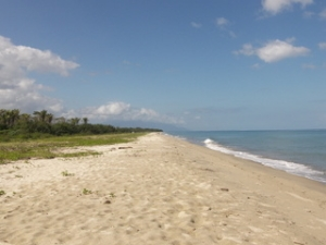 Once and one time chance to own Ocean front lot on Caribbean Sea in Balfate, Honduras. Miles of sandy beach, amazing mountains, jungle views and much more.  Do not miss out!!