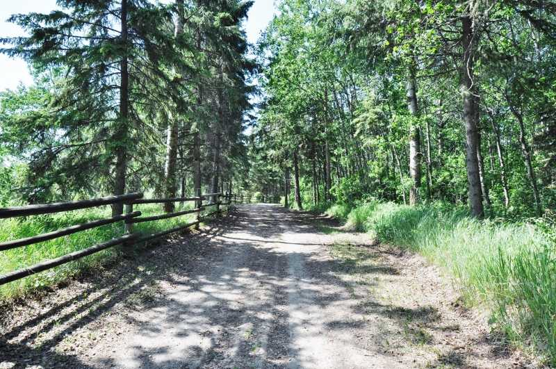 18.6 ACRES !!! FENCED & CROSSED FENCED !!! AND WELL CARED FOR 1220 SQ. FT. BUNGALOW W/ TONS OF UPGRADES !!! ENTER THIS GENTLY ROLLING LAND ALONG THE PRIVATE TREED LANE. BE WELCOMED BY BEAUTILFUL VISTAS IN EVERY DIRECTION & BE ENTHRALLED BY OUR STUNNING ALBERTA SUNSETS. 3 BDRM. 2 FULL BATHRMS. KITCHEN RENO & CENTRAL AIR; HIGH EFFICIENT FURNACE; H20 TANK all in 2011. SHINGLES; NEW WINDOWS; INSULATION; AIR EXCHANGE; HUMIDIFIER IN 2010:) THIS HOME HAS ALSO BEEN FRESHLY PAINTED & ENJOYS HARDWOOD & VINYL FOORING. THE 24'X24' GARAGE, 12'X8', 2 SHEDS 16'X8' & 12'X8' RESPECTIVELY & A POWERED SHED 22'X10' PROVIDE PLENTY OF DRY STORAGE OPTIONS. BUYER TO AQUIRE A GST NUMBER IN ORDER FOR THE SELLER TO AVOID PAYING GST. A 40' x 40' POLE SHED WITH METAL ROOF AND PLYWOOD SHEATHED WALLS FUNCTIONS AS A BARN AND HAS A H2O HYDRANT JUST OUTSIDE. PROPERTY IS FENCED AND CROSS FENCED WITH GOOD PASTURE AS WELL. LARGE GARDEN SPACE WITH FERTILE SOIL, RHUBARB, AND A RASPBERRY PATCH. GREAT POTENTIAL FOR HORSES OR HOBBY FARM.