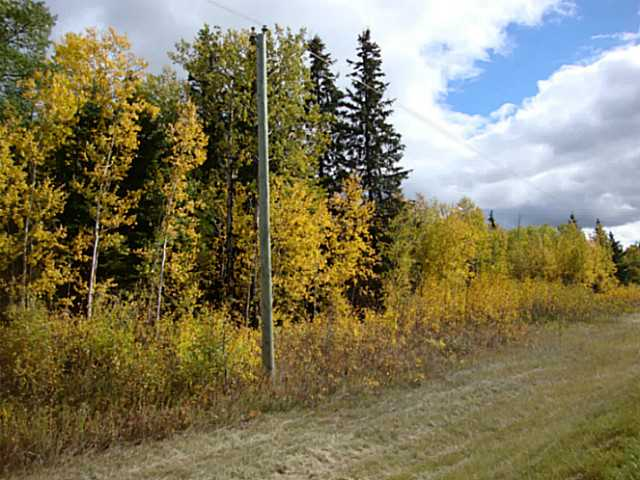 Very pretty and private 10 ac parcel subdivided from quarter section with nice mix of spruce, birch, poplar & willow that create a natural shelterbelt for the open area on the east side of this parcel. From corner of RR214 & Twshp 612, property measures 116m east and 347m south. Approach is on the south end. Power runs past and is easy to access. Gas service provided by Thorhild County and cost is $6500 + gst. GST may be applicable.