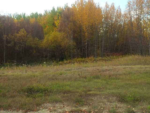 Beautiful treed private  vacant lot. In cul-de-sac location. Build your dream home with walkout if you wish. Close to and walking distance to  Johnnys Lake. Only 15 minutes to Stony Plain. Enjoy the quiet country life. Only $69,900 3.29 acres. Don't delay! In Lakeside Park subdivision.