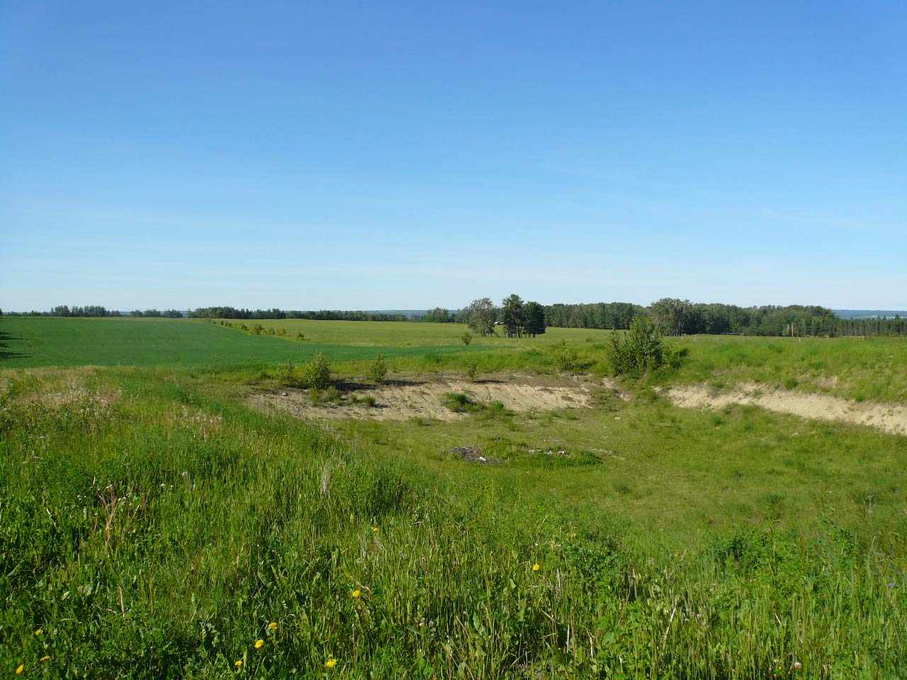 20 acres bareland located on Hwy 616X (Twp 474) very close to Pigeon Lake.  Great building spots.  GST may be applicable.