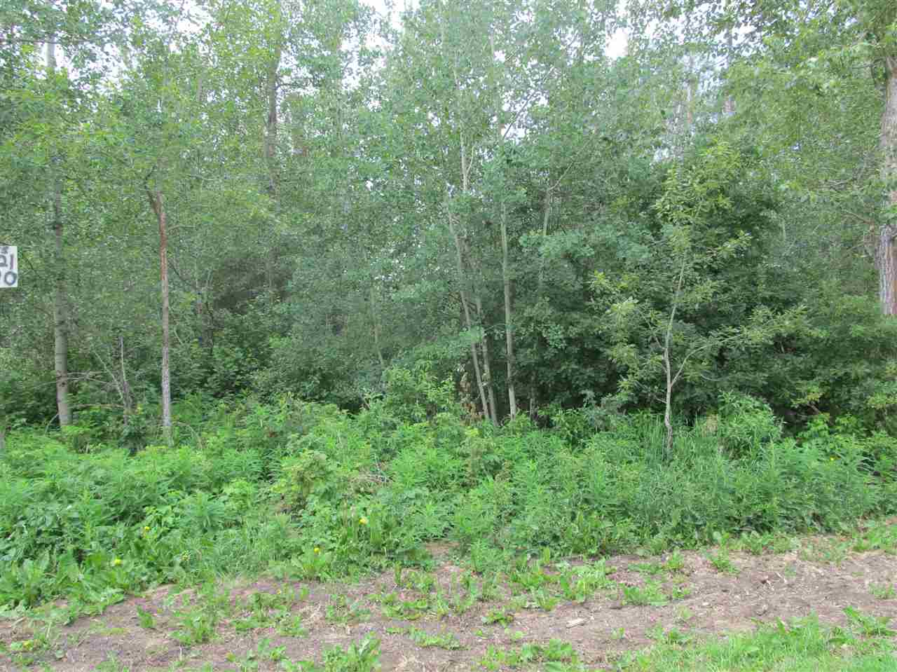 Nicely treed 50'x150' vacant lot in the Summer Village of Sandy Lake, less than an hour to Edmonton.  Adjoining vacant lot is also for sale if more land is wanted.