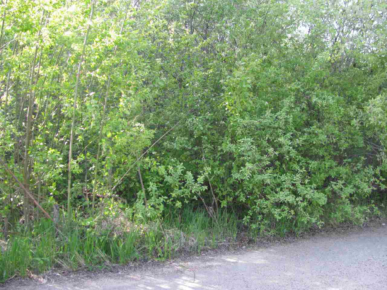 Vacant, recreational, fully treed lot at Vincent Lake, near St. Paul, AB. Lakefront view lot. Sellers request this property to sell with adjacent cottage. Next door available at $42,500.