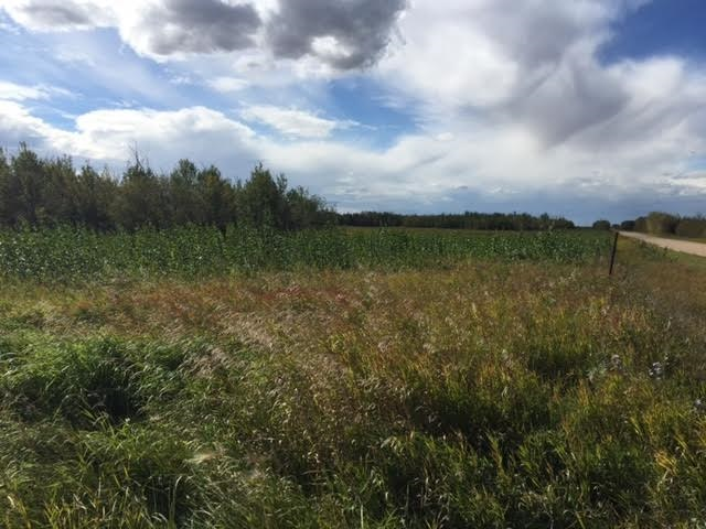 29.90 Acres located just 9 kms from Ryley on the corner of Highway 854 north and 626. Beautiful location to build your dream home on. Services are at the road and G.S.T will be applicable. Only 10 mins to Tofield and 20 mins to Vegreville. Land is broken up as follows: 9.77 acres arable and 20.138 acres pasture. An absolute must see!!!
