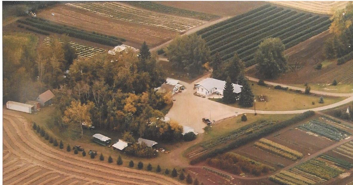 "A short 5 minute drive from St. Albert discover this exceptional piece of land with shop, garage, renovated bungalow & so much more on 72 acres. There is approx. 20 acres of horse pasture, 36 acres of cropland & a beautiful home site. There are acres of raspberry & saskatoon bushes, which are currently used for a ""U Pick"" operated on the property. The 1612 sqft bungalow was built in 1961 & had an addition/renovation added in 2001. The renovations give it an OPEN DESIGN. The dining room, kitchen, & great room all share one large space & have views out three sides of the home, taking in gorgeous acreage views. The kitchen has a gas stove & eating bar peninsula. The great room has a corner WOOD BURNING STOVE & access out to the covered deck. There is a large master bedroom & spacious 4 pc bathroom completing the main floor. The basement has 2 beds, a 3 pc bathroom with the laundry facilities & a mechanical room. The 28'x16'10"" shop is heated & there is a 43'x24' SHOP without heat attached to it."