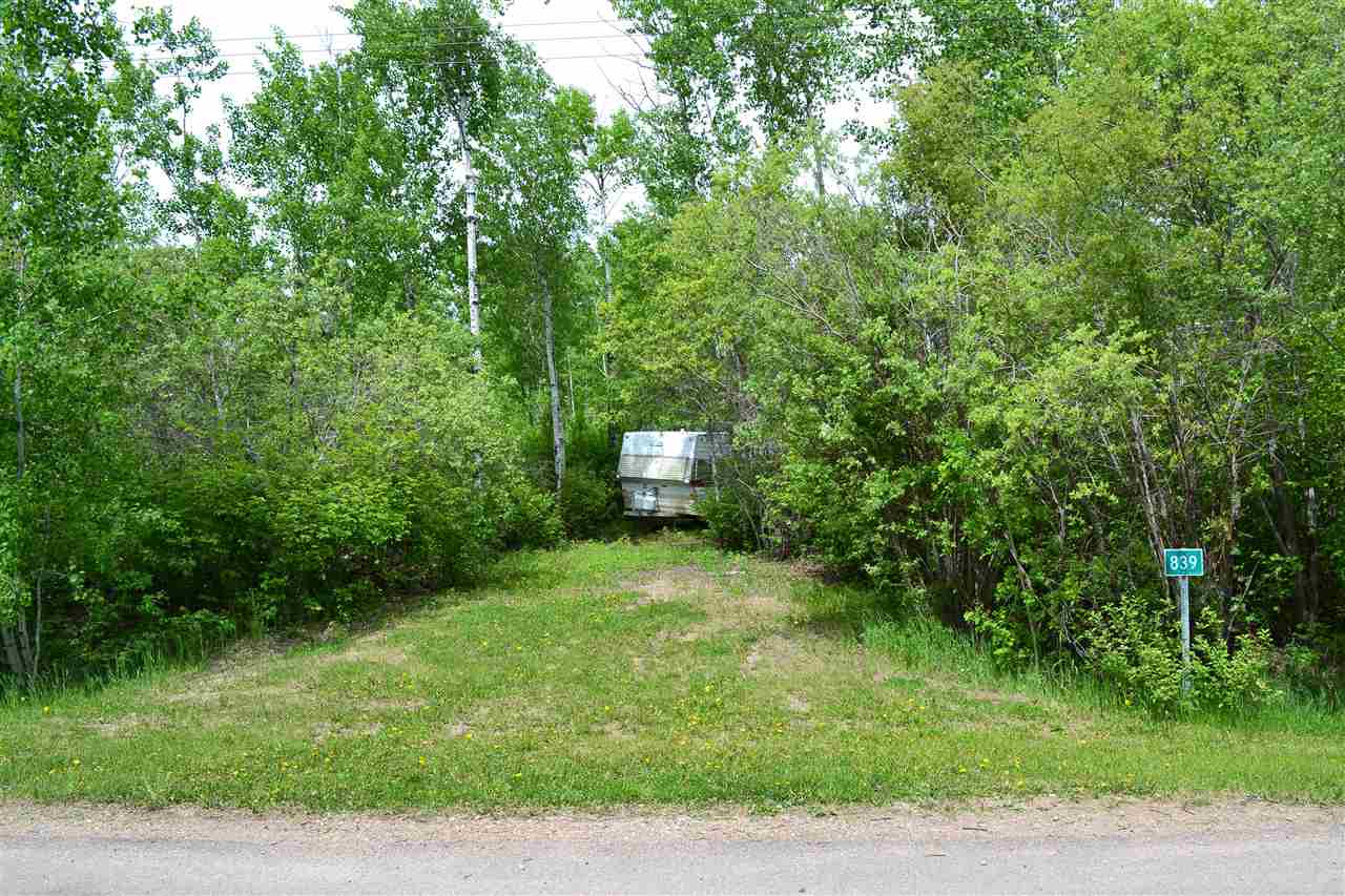 A blank canvas ready for new opportunty. Flat and heavily treed, this lot is just waiting on that dream home or summer cabin. Start your next adventure in a quiet  community just a few minutes from Ashmont and many different lakes.