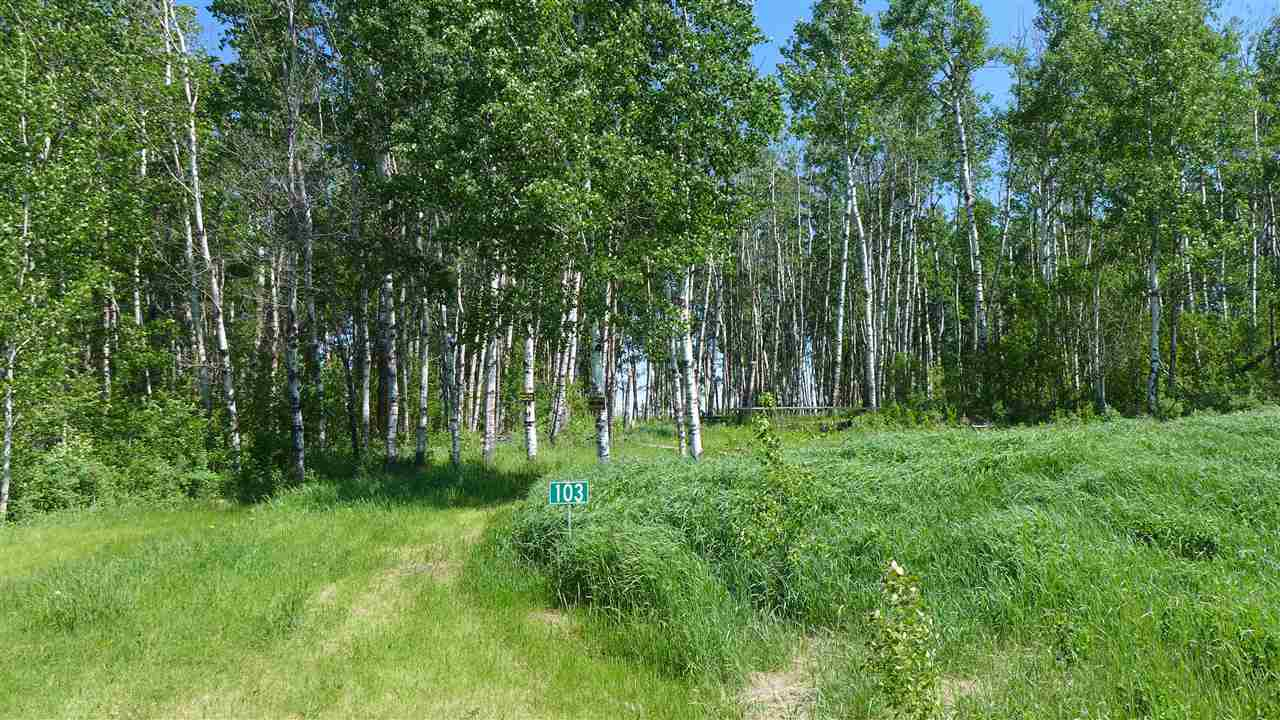 A SUPERB ACREAGE IN TWIN RAVINES ON THE BANK OF THE NORTH SASKATCHEWAN RIVER! Build your dream home on this beautiful 3.48 acre treed lot or have a weekend get-a-way or just own a piece of Alberta. Across the road is reserve land so you will have privacy. It is nicely treed. Don't miss this one.