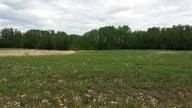 108.95 acres, close to Sherwood Park and Ardrossan.  Great potential for a new subdivision