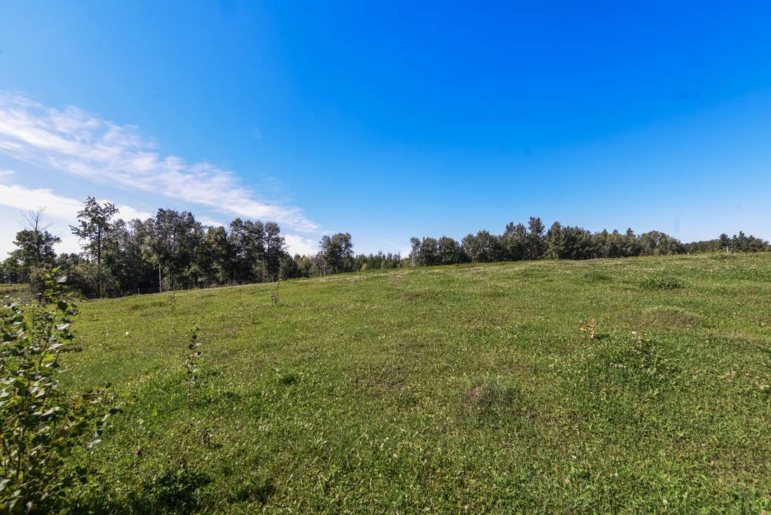 61.31 acres cross fenced. Rolling land with trees. There is power to the property line. Great development opportunity only 20 minutes to Spruce Grove.  The sale price will be PLUS GST.