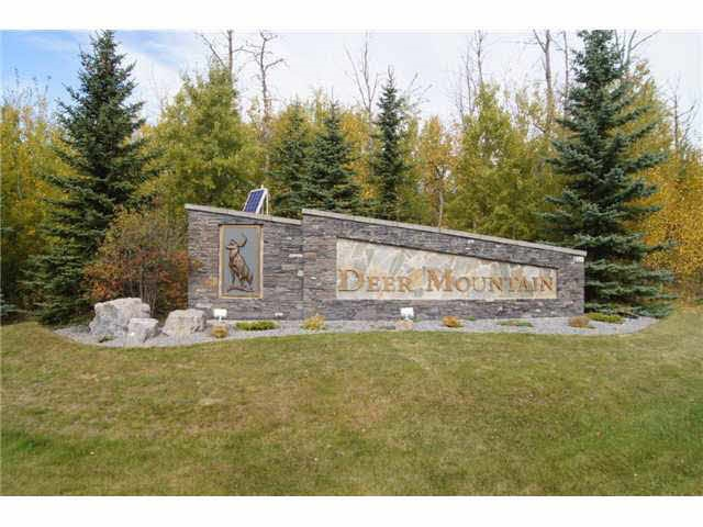 Located in the Prestigious DEER MOUNTAIN subdivision minutes from Sherwood Park. This lot offers 1.97 acres, high dry land, plenty of trees for privacy with access to the Anthony Henday and close proximity to Sherwood Park  it is like city living in the county setting. Great location to build your dream home. Don't miss out on this rare opportunity!!