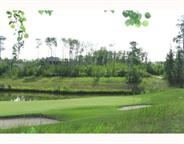 Build your own dream home or we can build it for you. Over 1/2 acre lot in exclusive gated West Bear Haven Community backing onto the 10 hole green at World class Northern Bear Golf Course. Estate home subdivision with architectural guidelines. Underground water and sewer services. Close proximity to Sherwood Park, Edmonton and International Airport.